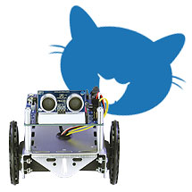KittyBot and Polite ActivityBot
