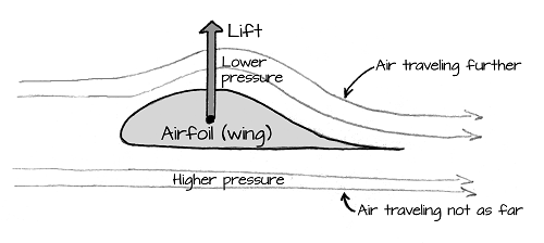 the forces involved in flight