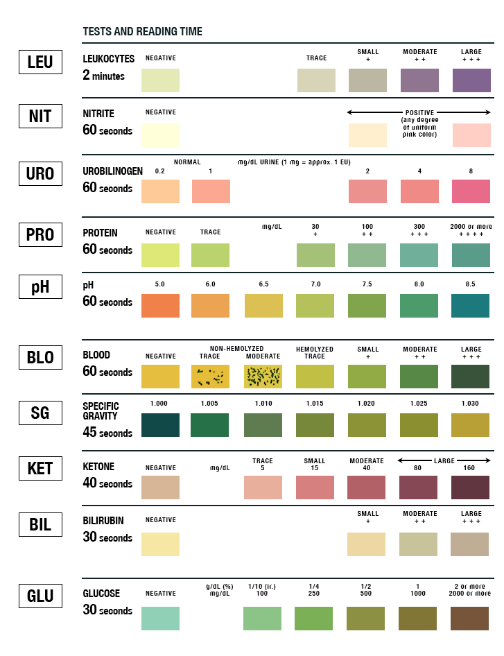 urinalysis test strip color chart | learn.parallax, Skeleton