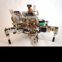 Prospero: The Robot Farmer