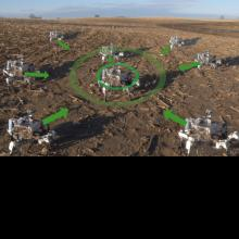 Prospero: Robot Swarm