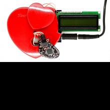 Cardiac Simulator Closed